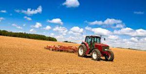 Produzione agricola