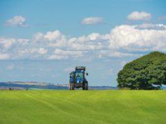 UN MILIONE E TRECENTOMILA EURO PER L'AGRICOLTURA DELLA MONTAGNA